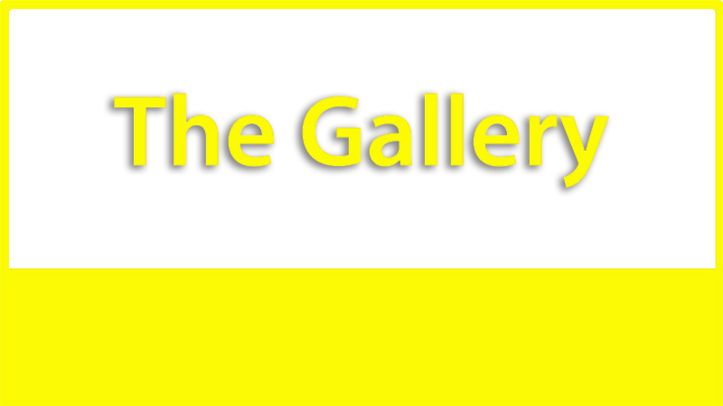 3 The Gallery